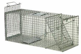 Safeguard� Standard Rear Release Cage Trap 52818SRR